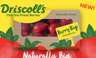 0430   driscollsstrawberries
