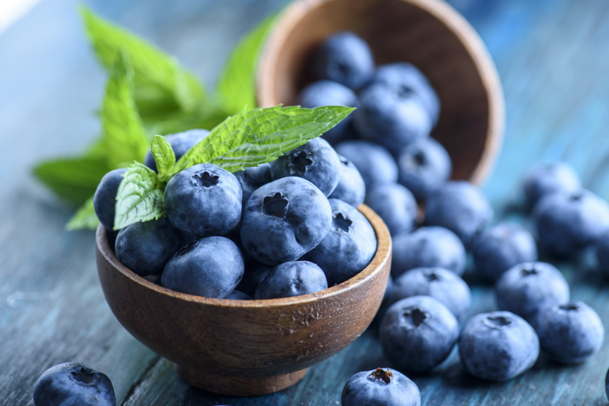 Blueberry industry launches Blueberry Method campaign | 2020-04-30 ...