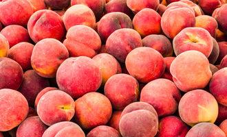 0820   peaches1
