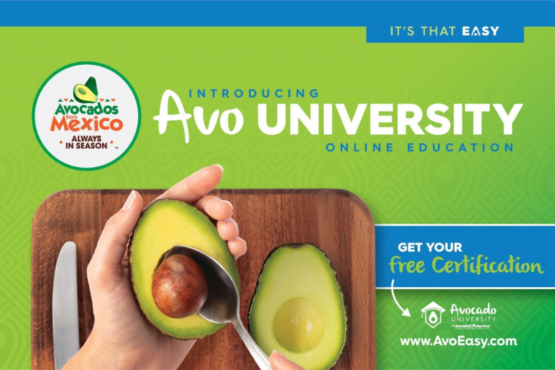 Avo University