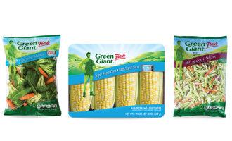 1016   green ginat