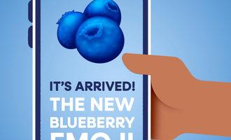 1106   blueberry