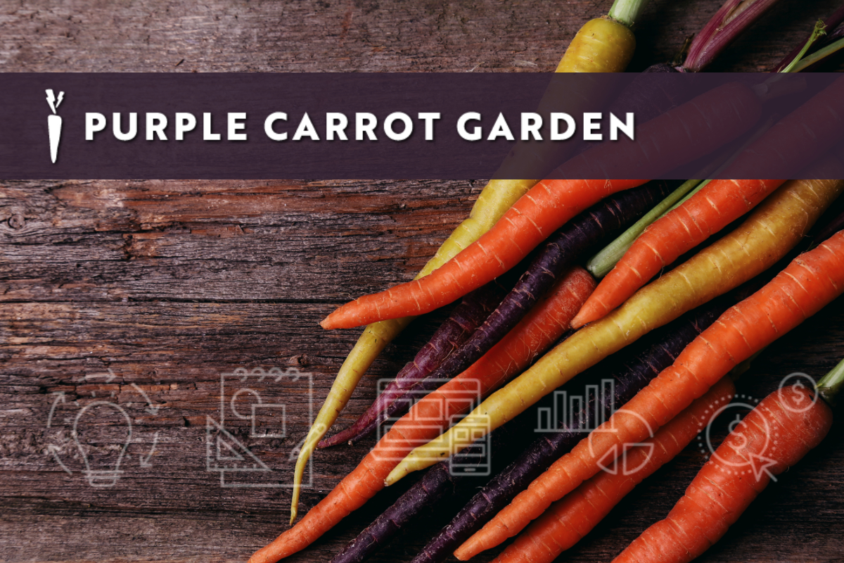 Purple Carrot Garden Incubator