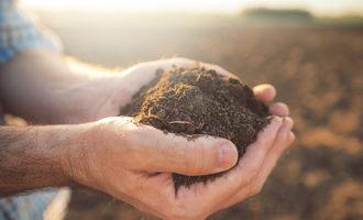 Farmerholdingsoil lead