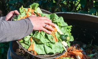 Composting_lead