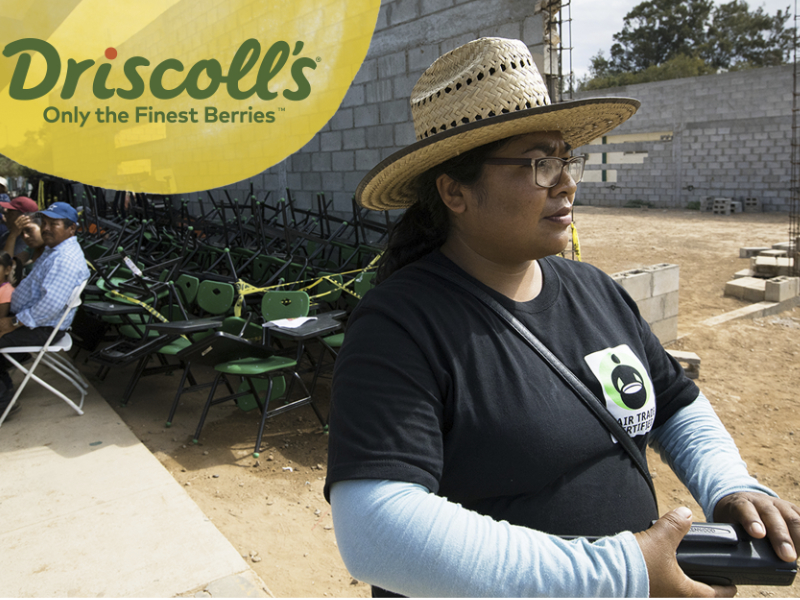 Driscolls_FairTrade