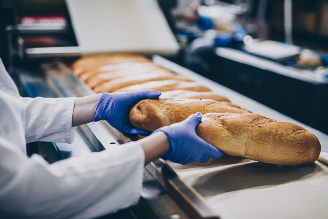 Bread manufacturing line