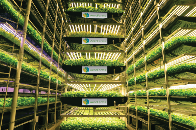 Aero Farms' indoor farm in Newark, New Jersey