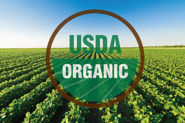 soybean field with USDA organic logo