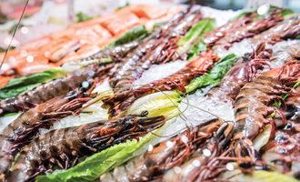 0422   seafood
