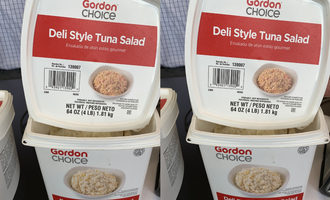 0816   gordon choice