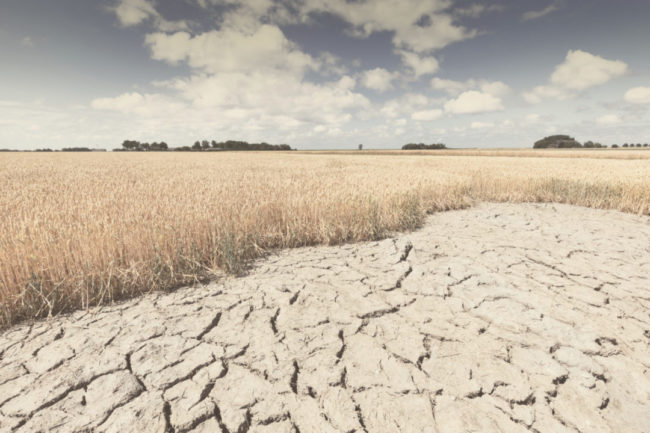 climate-change-drought_Lead.jpg