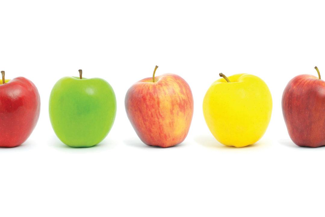 0908---apples.jpg
