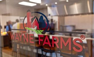 Wayne farms lead