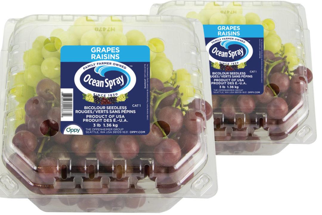 1013---packaged-produce.jpg