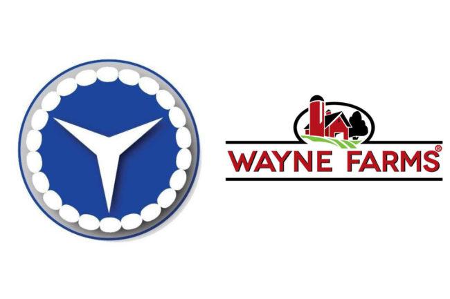 Amick-Farms-Wayne-Farms.jpg