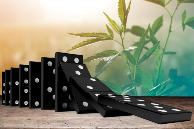 Cannabis domino effect