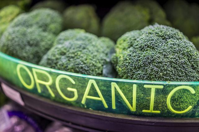 Organicbroccoli_lead