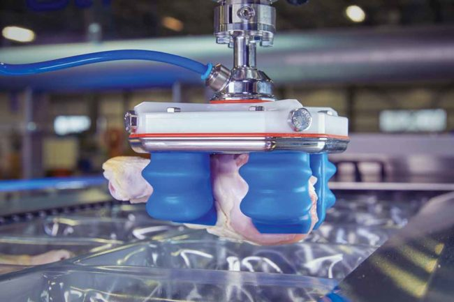Soft Robotics grippers are compatible with most food-safe robots.