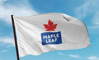 Mapleleaffoodsflag small