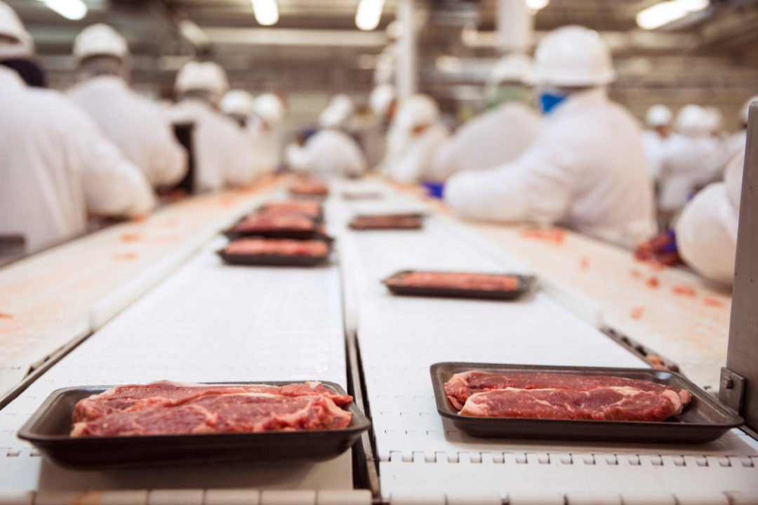 Beef manufacturing