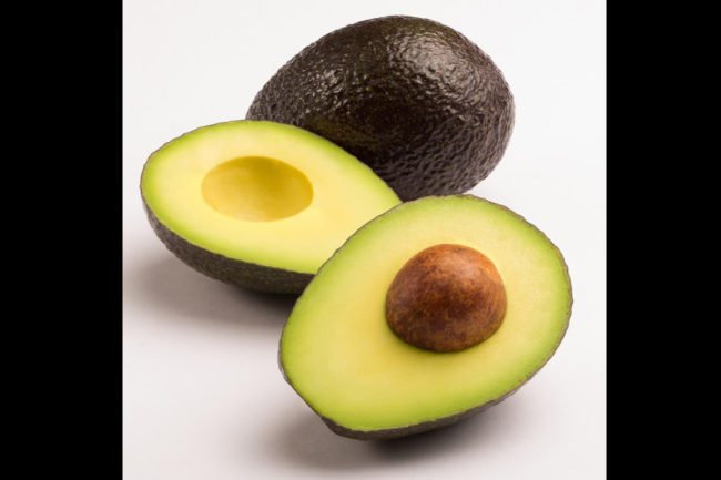 avocados sp