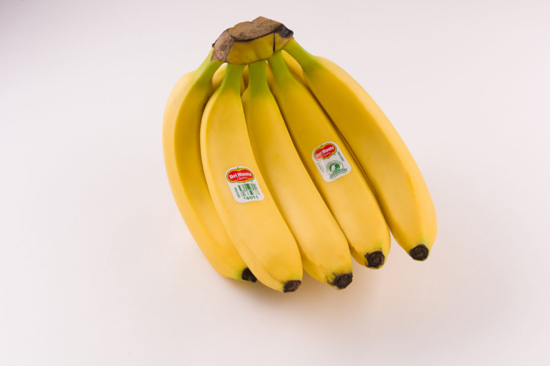 bananas sp