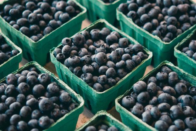 blueberries sp