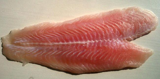 fish fillet sp