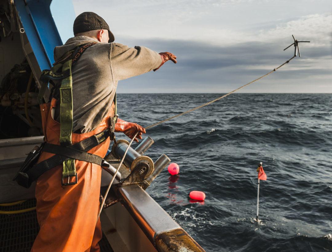 fishing sp
