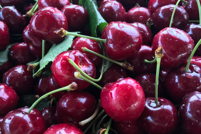 cherries stemilt sp